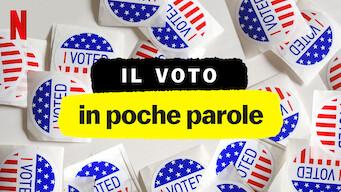 Il voto in poche parole